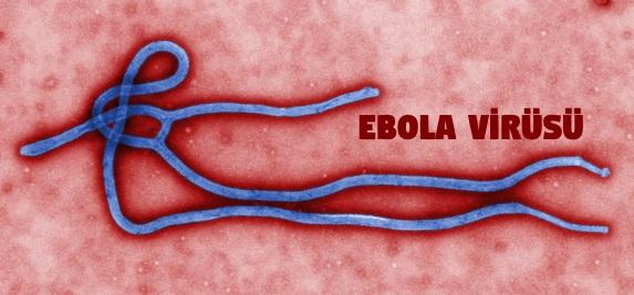 Ebola Hastalığı Belirtileri