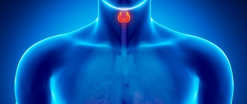 Hipertiroidi Belirtileri