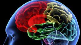 Beyin Damar Tıkanıklığı Belirtileri