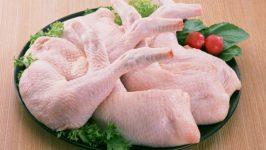 Tavuk Zehirlenmesi Belirtileri